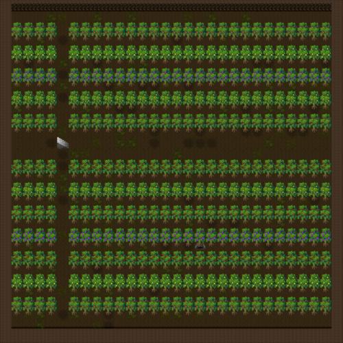 踊り子エレアの公演39